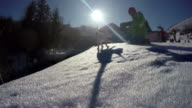4K footage of a man playing with his bull terrier in winter video
