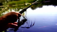 A footage of fisherman's hands spinning the coil on the fishing rod (spoon-bait), having caught the prey video