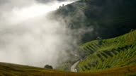 Footage of Terraced rice field with fog at sunrise time,Mu Cang Chai, Yen Bai province, Vietnam video