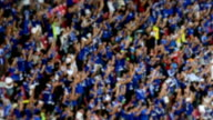 football fans cheering. video