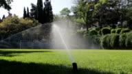 Football field watered video