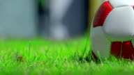 Footballl on Grass. HD video
