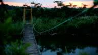 Footbridge in the Park video