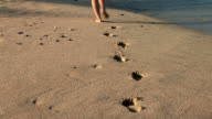 HD: Footprints in the sand video