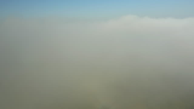 AERIAL Forest And Countryside In The Morning Mist video