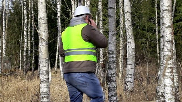 Forest engineer talking on cell phone in birch grove video