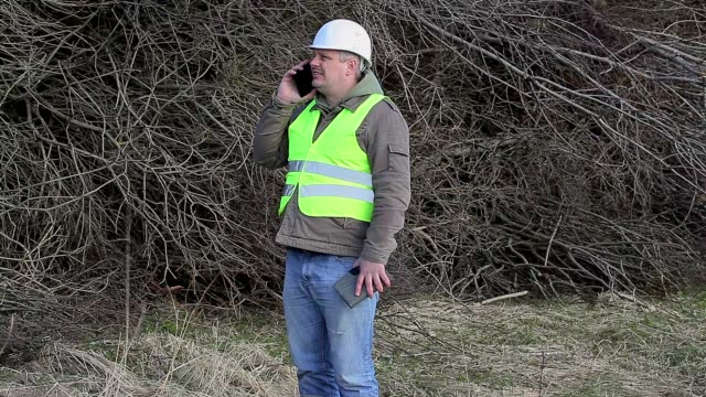 Forest engineers with cell phone andtablet PC near pile of twigs video