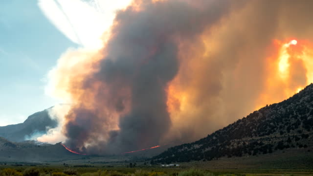 Forest Fire Time Lapse Burning video