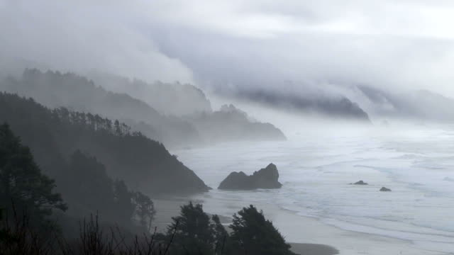 Forest Fog and Ocean Rain Time Lapse video