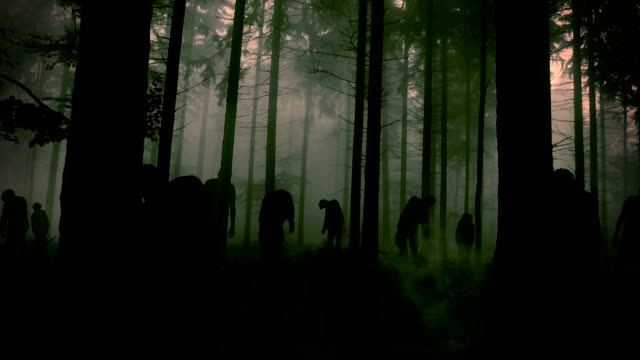 forest full of zombie video
