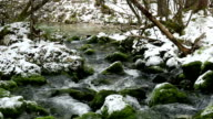 Forest stream with snow video