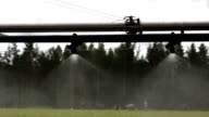 Forestry automatic watering equipment slow video