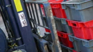 Forklift moving a crate palette of grapes during the harvest video