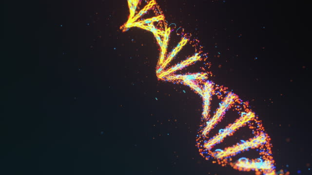 Formation of DNA Molecule video