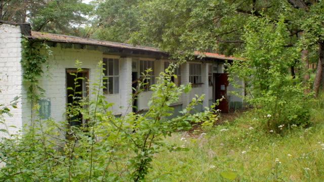 forsaken house in forest, summer day video