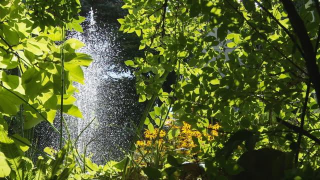 HD DOLLY: Fountain In Sunlight video