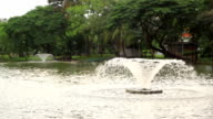 Fountain in the pond. video