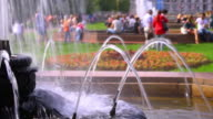 Fountains in a park video
