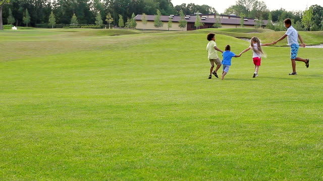 Four children are playing on the glade. video