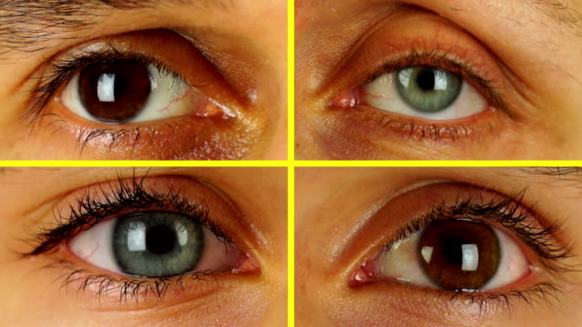 Four Different Human Eyes Look in a Circle video