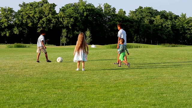 Four kids are playing on evening glade. video