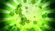 Four Leaf Clover Background Loop video
