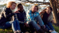 Four multiracial friends sitting at rural area video