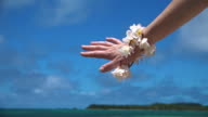 Frangipani flowers decorate woman hand in tropical resort video