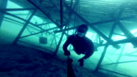 Freediver Exploring a Big Underwater Structure video