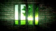 Freedom behind bars HD animation video