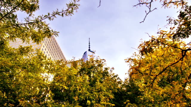Freedom Tower and leaves video