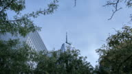 Freedom tower and trees in Manhattan, New York, USA video