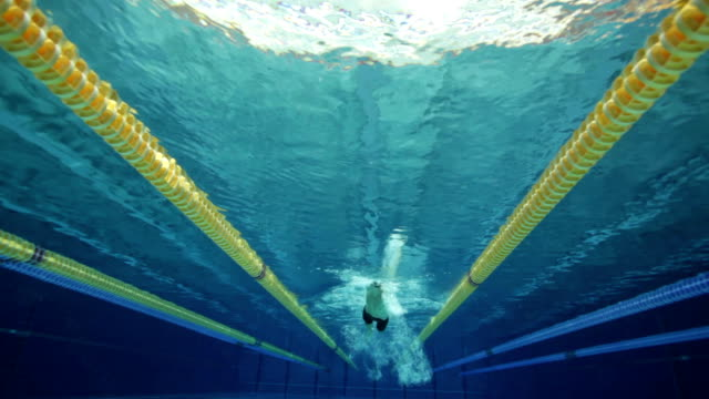 freestyle swimmer video