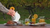 French breakfast on vineyards background, video