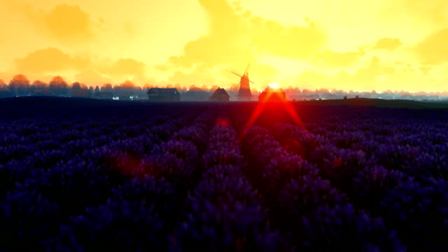 French lavender village with old windmill against morning sunrise, tilt video