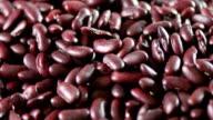Fresh Bean close up video