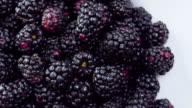 Fresh Blackberries on the breakfast table. video