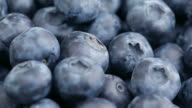 Fresh blueberries, fruit background video