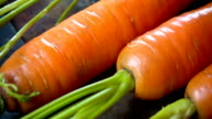 Fresh Carrot close up video