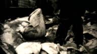 Fresh Catch Of Alaskan Halibut-1940 Vintage 8mm film video