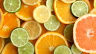Fresh citrus fruit slices video