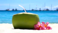 Fresh coconut with drinking straw on tropical beach video