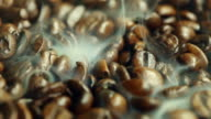 fresh coffee beans and steam video