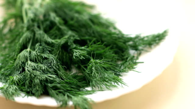 Fresh dill branches video
