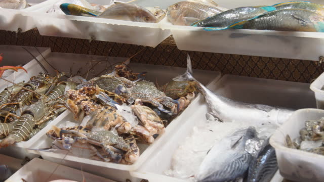 fresh fish and seafood on the market video