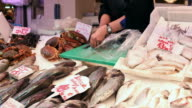 Fresh Fish on a market video