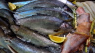 Fresh frozen saltwater fish, shrimp, mussels and oysters with a lemon decoration video