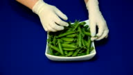 Fresh green peas in white dish on a blue background. video