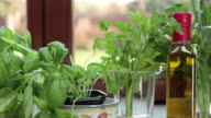 Fresh herbs in the kitchen, tracking shot video