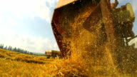 Fresh Mown Hay Falling Out Of Combine Trailer video